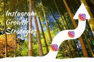 Instagram-growth-strategies